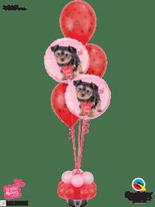 bukiet balonowy z pieskami balony w Katowicach