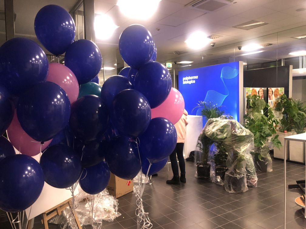 balony z helem z okazji re-brandingu Polfarma