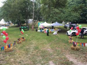 balony z helem na pikniku firmowym