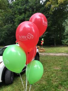 balony z nadrukiem Lobo