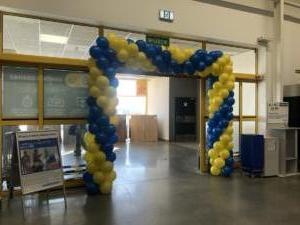 brama-balonowa-wewnatrz-sklepu-Castorama-dekoracja-jak-dekoracja-z-balonow-na-jubileusz